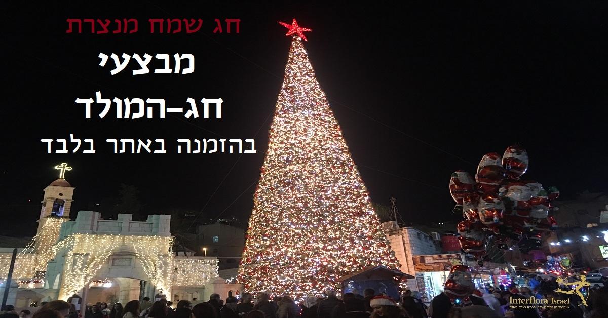 מבצעי חג-המולד ושנה חדשה