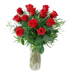 Roses 12 medium