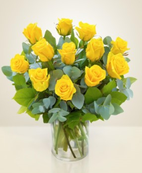 Clasic Roses